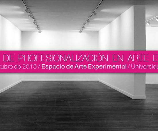 jornadas-de-profesionalizacion-de-arte-contemporaneo-julio-falagan
